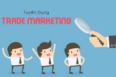 Tuyển dụng Trade Marketing (Up to 20tr/tháng)